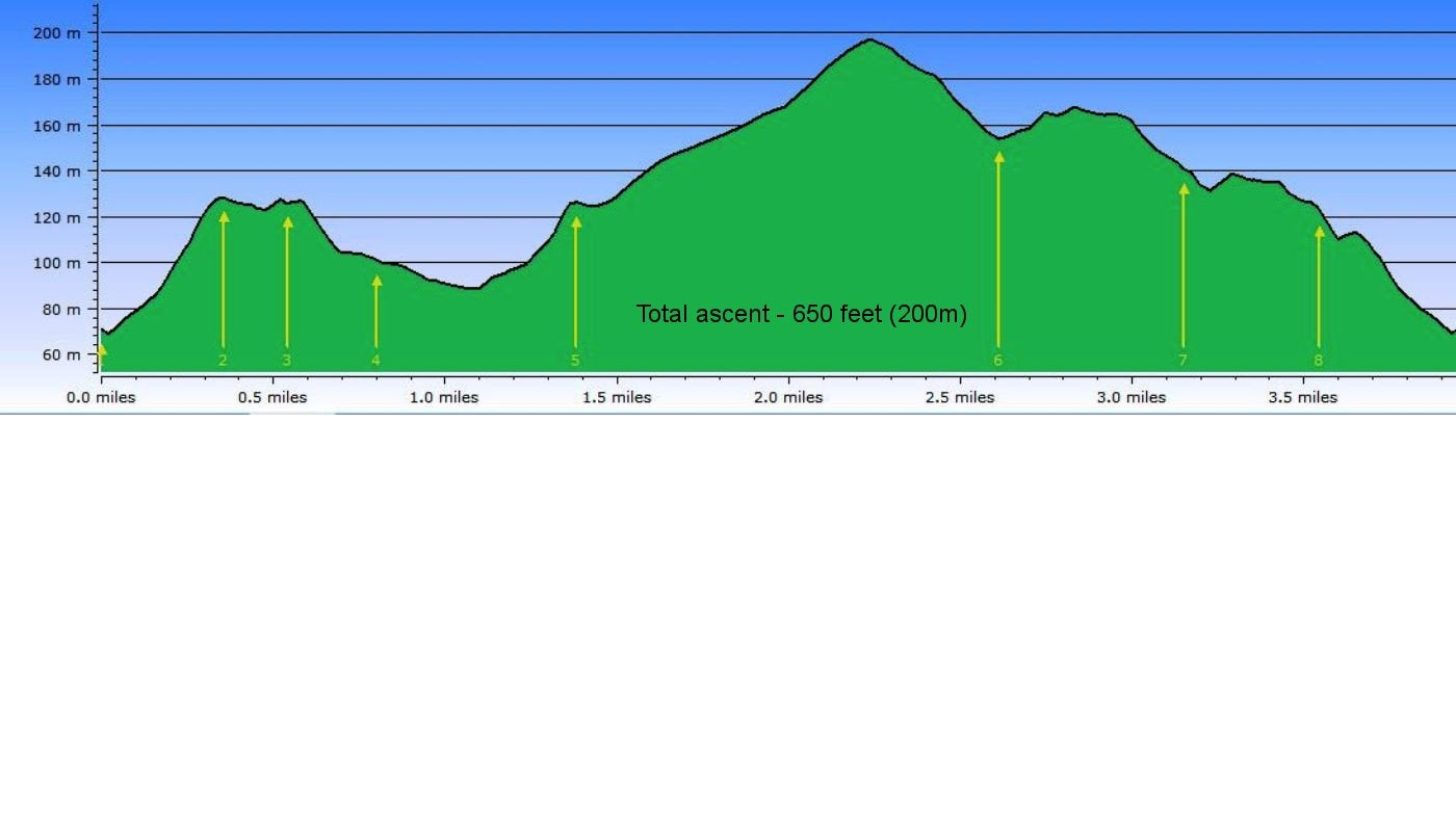 Stone Cat Elevation Profile : Mottistone meander climb to the common national trust