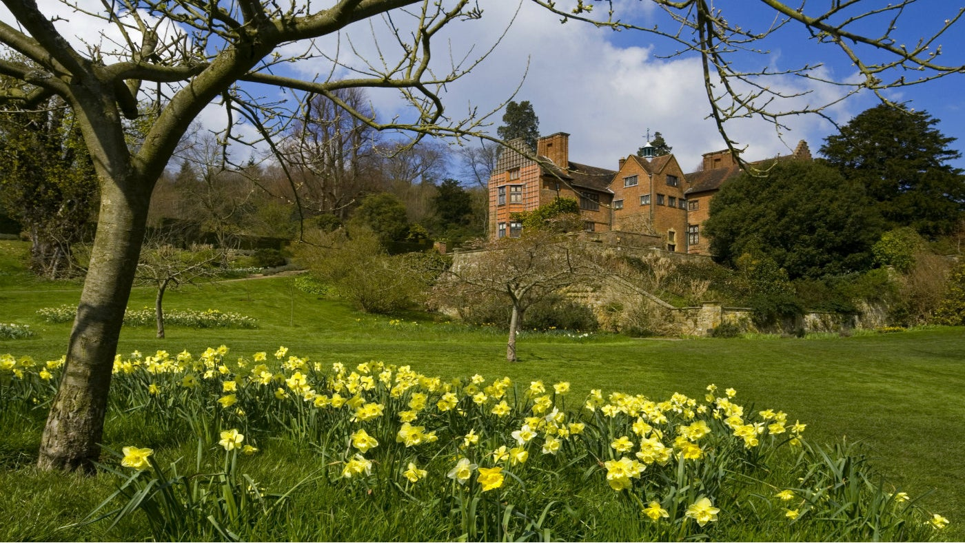 Spring daffodils in front of Chartwell house