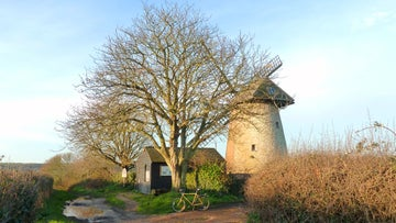 Bembridge Windmill in early morning sun