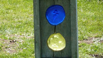 Discs on Jewelled trail at Dunstable Downs