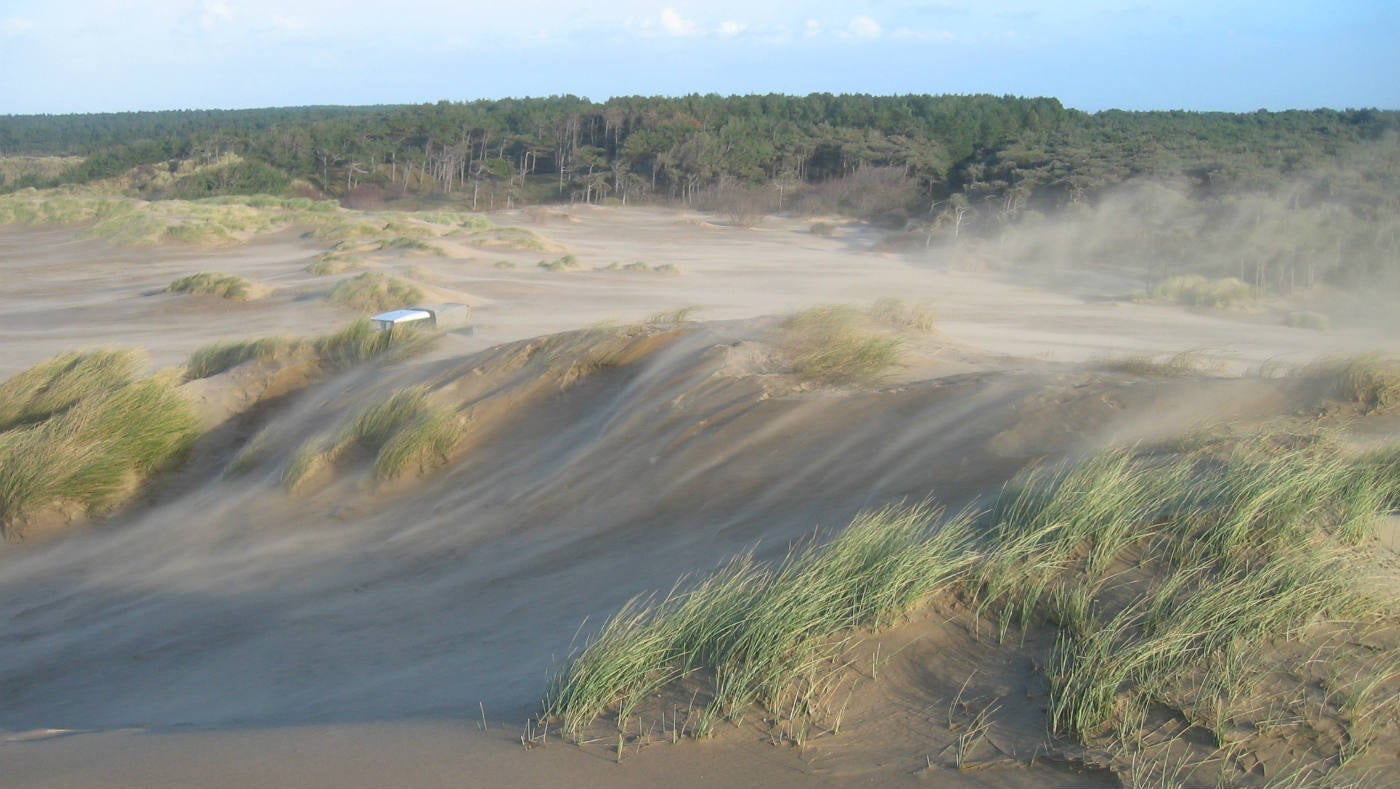 an introduction to the analysis of the beach dune erosion Rising seas are likely to accelerate beach erosion and coastal inundation constructed beaches and dunes in a four municipality project with cost of $19 trends - beach replishment author: aucott subject: beach replenishment.