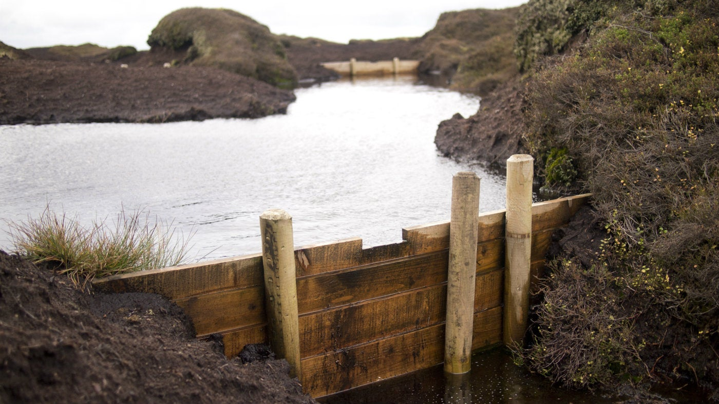 water filled peat gully wooden gully block in foreground