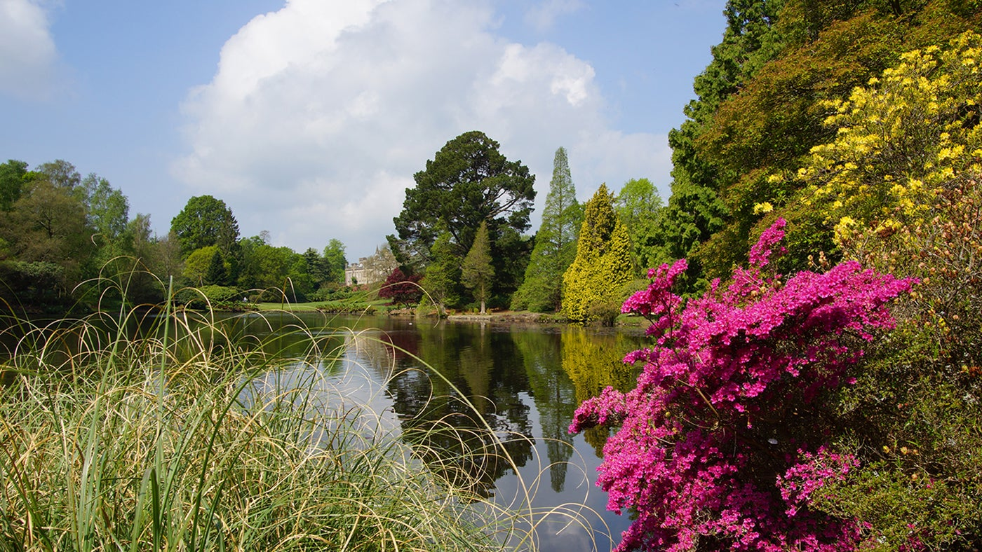 Spring reflections at Sheffield Park, East Sussex