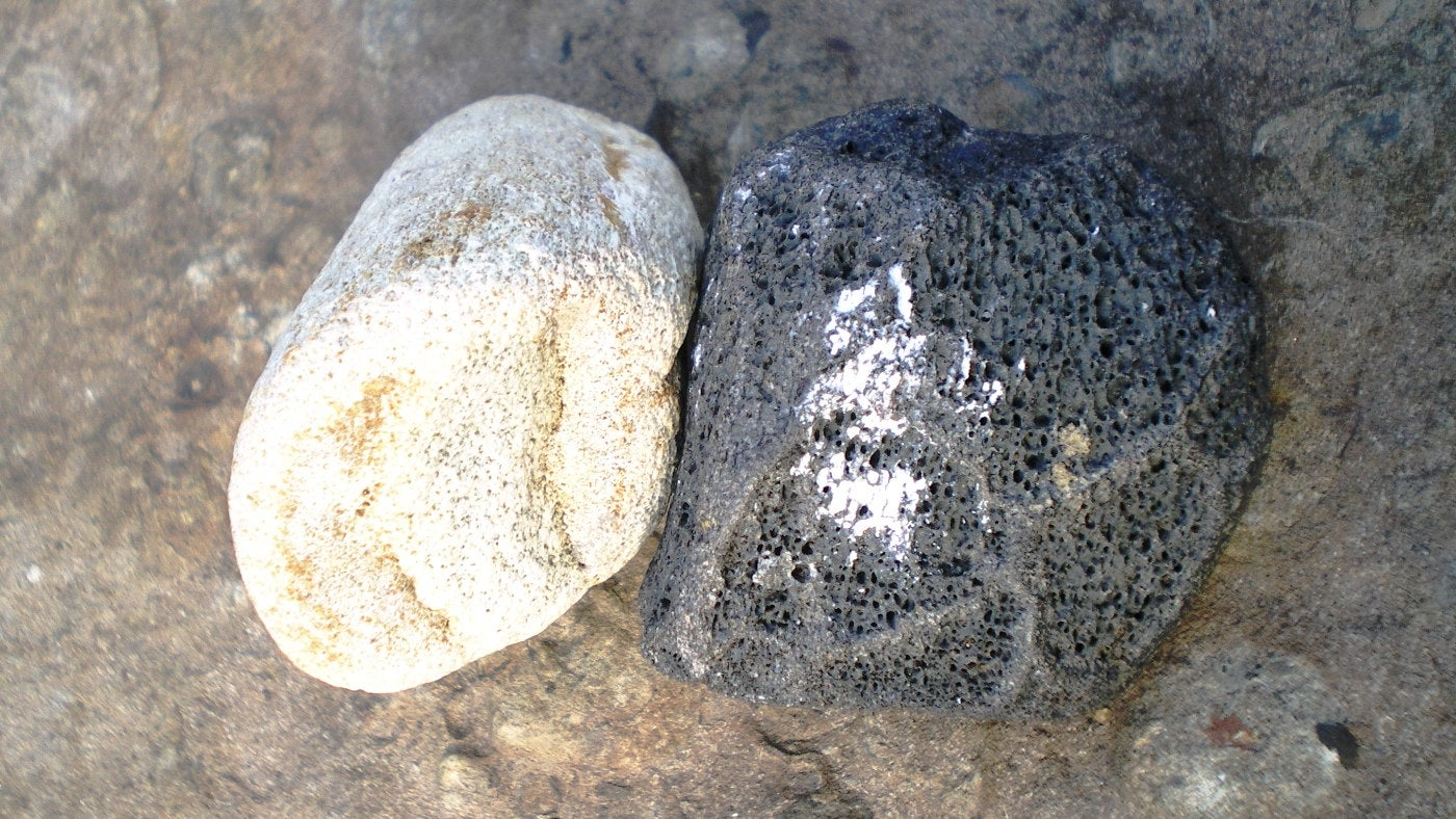 Searching for fossils around Compton Bay