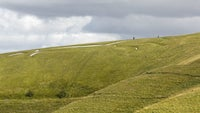 The White Horse at White Horse Hill, Uffington, Oxfordshire