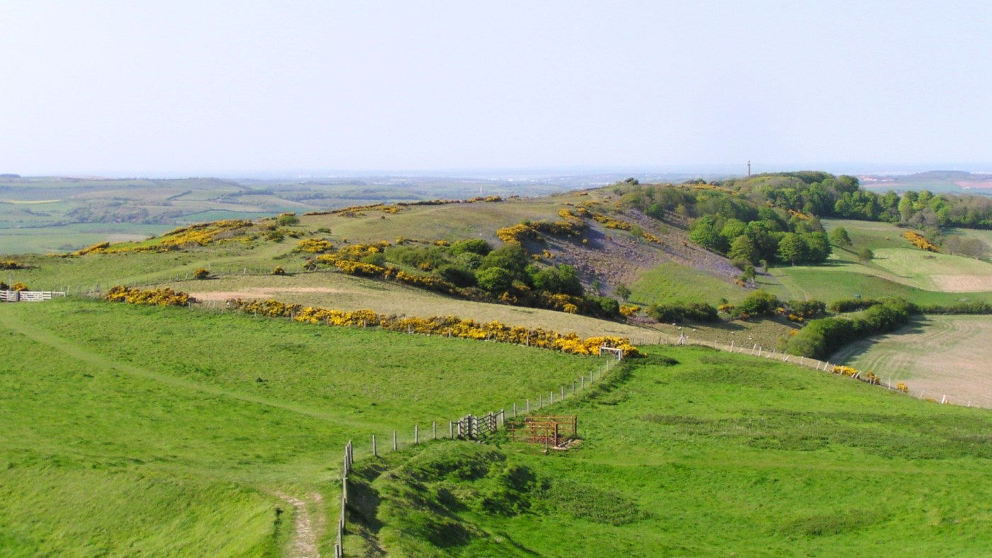 Seen from St Catherine's hill, the ridge leading to the Hoy Monument stretches out in front