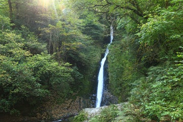 The Whitelady Waterfall, Lydford Gorge, Devon