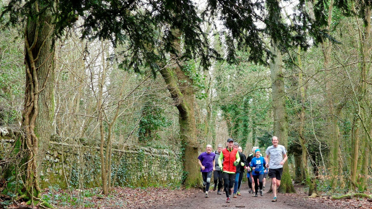 A group of runners running in Leigh Woods