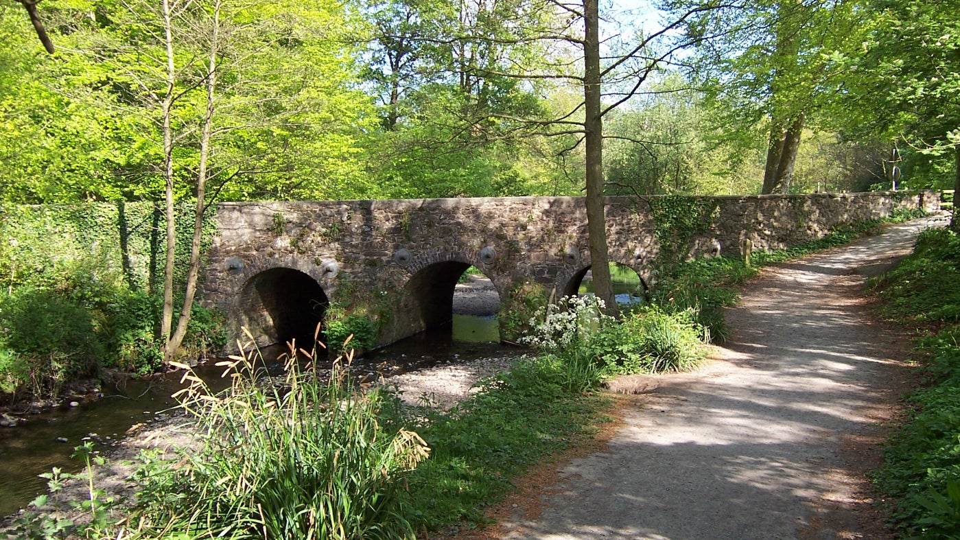 Spring at Minnowburn Bridge, County Down