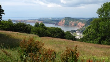 There are stunning views across to Sidmouth from many sections of this accessible walk