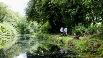 A couple and their dog walk along a tree lined riverside path in Watermeads
