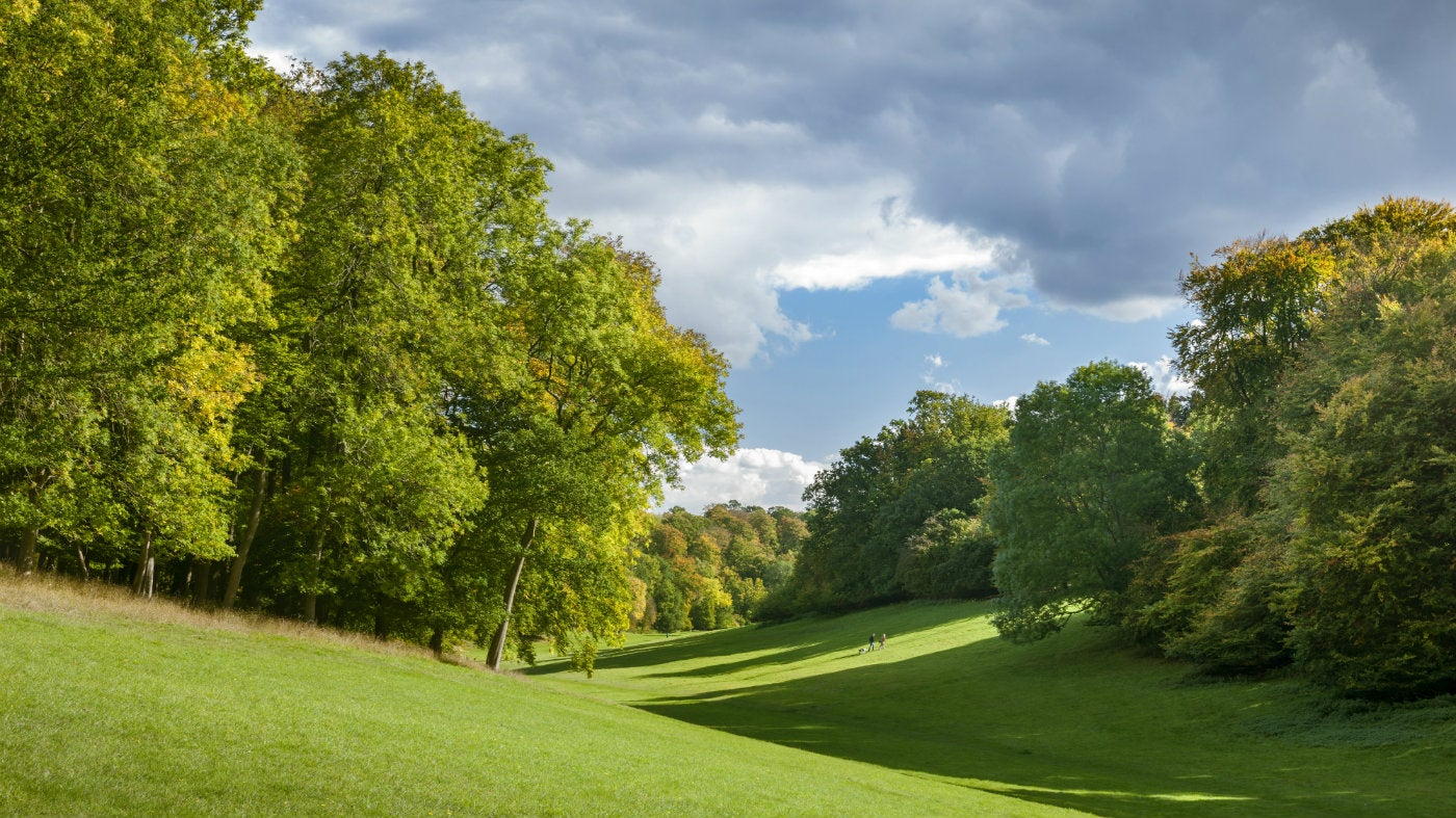 Capability Brown - From Scratch