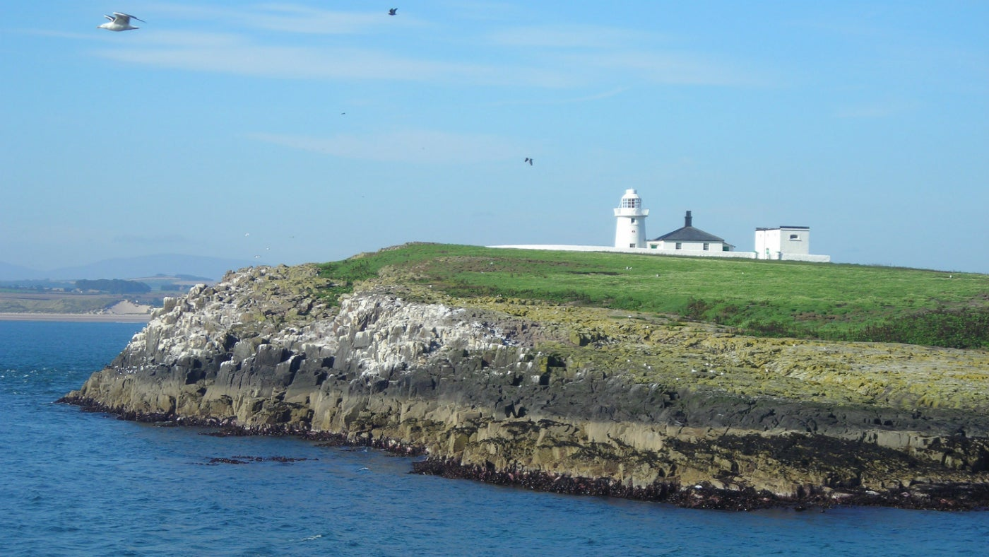 Inner Farne lighthouse on the Farne Islands, Northumberland