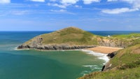 Mwnt beach in the summer is home to dolphins, seals and porpoises