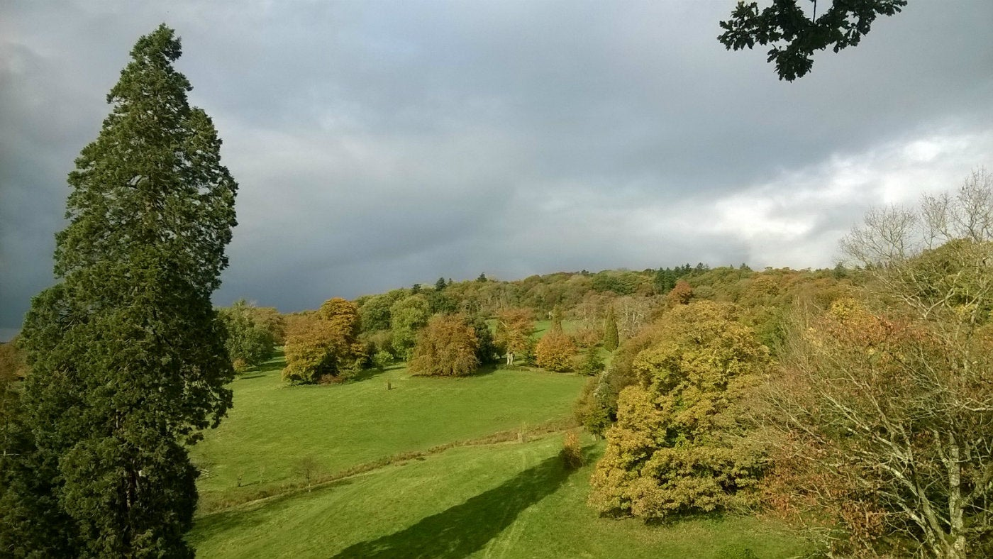 View of landscape across Knightshayes parkland