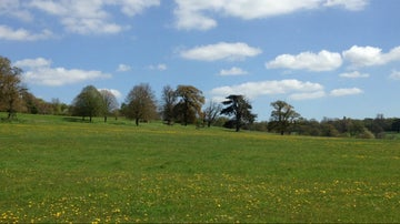 Coleshill Park in May, The Buscot and Coleshill Estates Oxfordshire