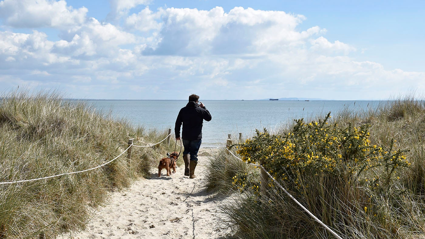 A dog's Life at Studland Bay - video