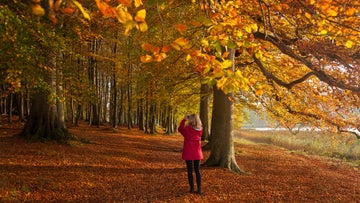 Lady in a red coat taking a photo of the autumn colour