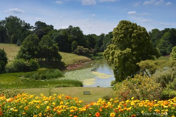 Summer garden view at Dudmaston