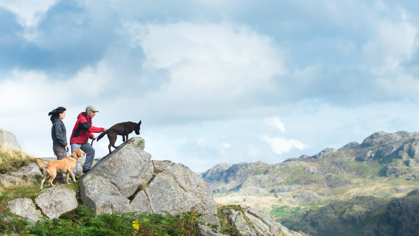 Walkers and their dogs at Blea Tarn in Eskdale and Duddon Valley, Cumbria