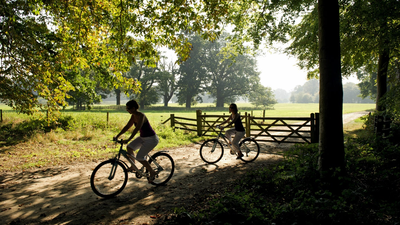 Two people on bikes on the Blickling Estate