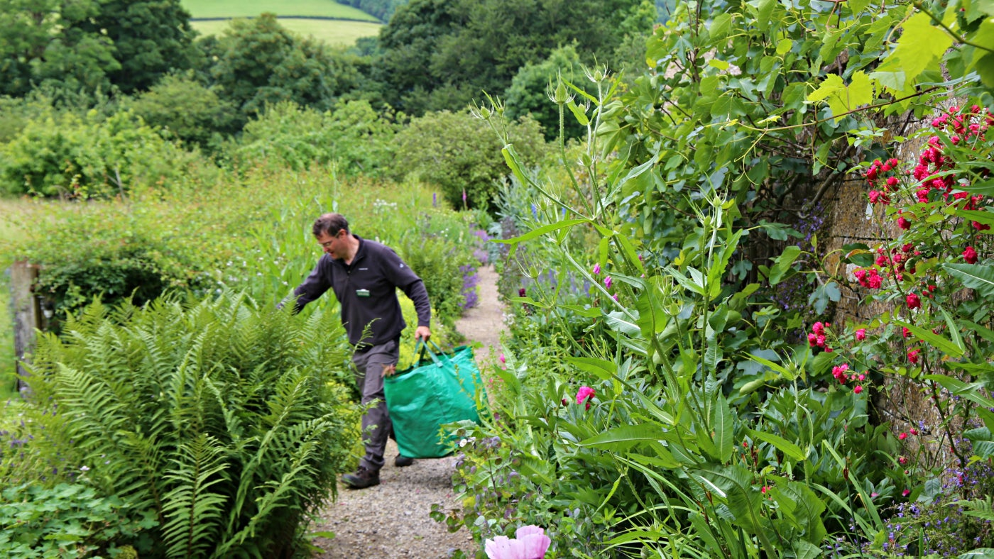 Strange gardening jobs in the south west national trust for Gardening jobs cornwall
