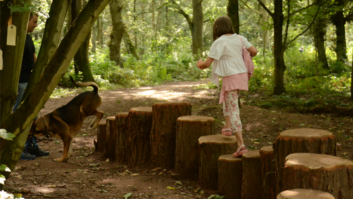 There is natural play throughout the woodland of Kinver Edge