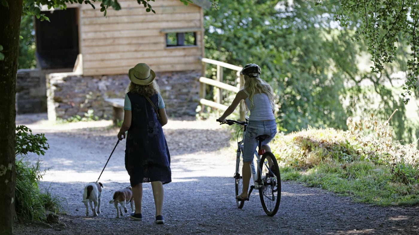 A lady walks her dogs as a cyclist passes her along the river edge at Saltram