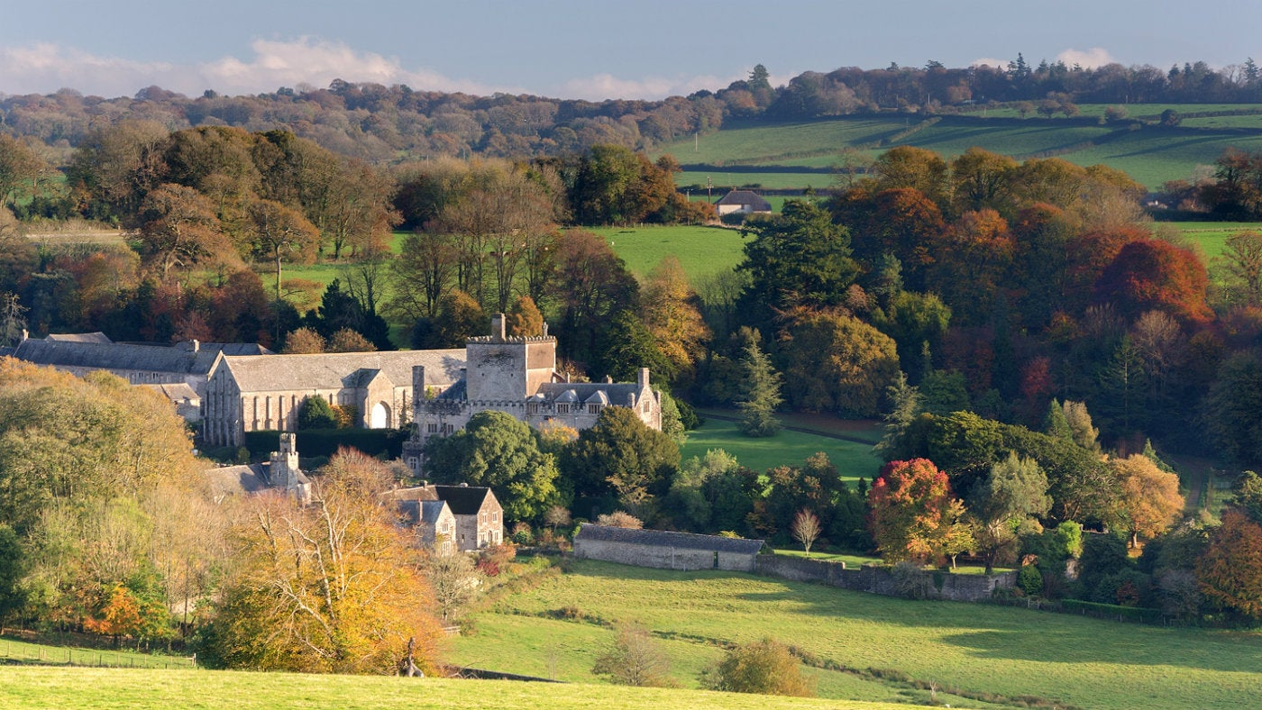 A beautiful autumn day over the Buckland estate