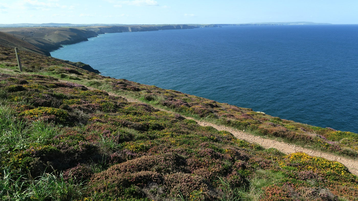 The coastal path at St Agnes Head