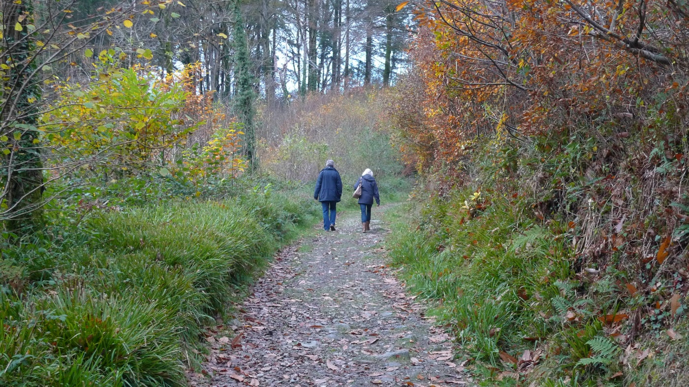 Two walkers on a path in the countryside in autumn at Cotehele, Cornwall
