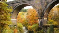 Cann Viaduct, Plymbridge Woods, Devon