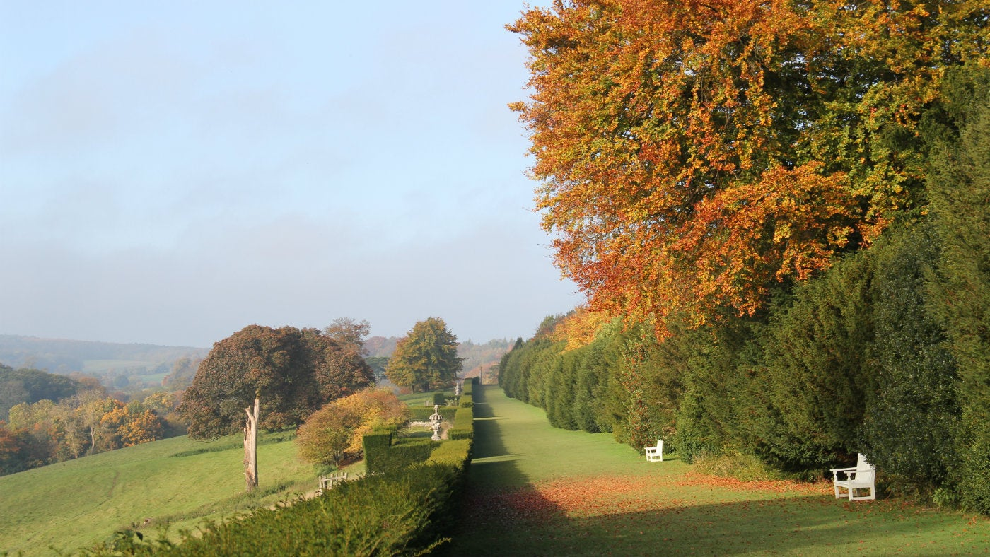 The view down Long Walk at Polesden Lacey