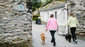 Two ladies walking with dogs at Claife Viewng Station