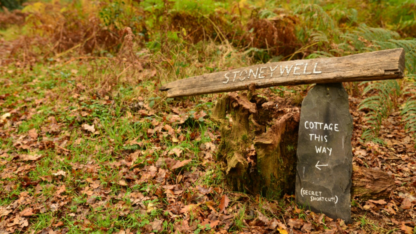 Stoneywell Woods in Leicestershire