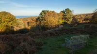 View towards the sea. The trees are starting to show their autumn colours