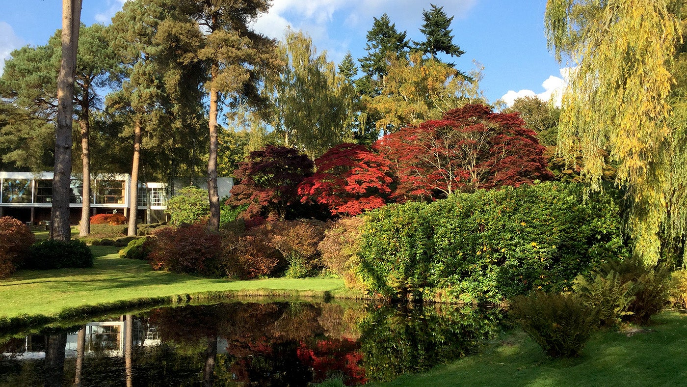 The garden at The Homewood | National Trust