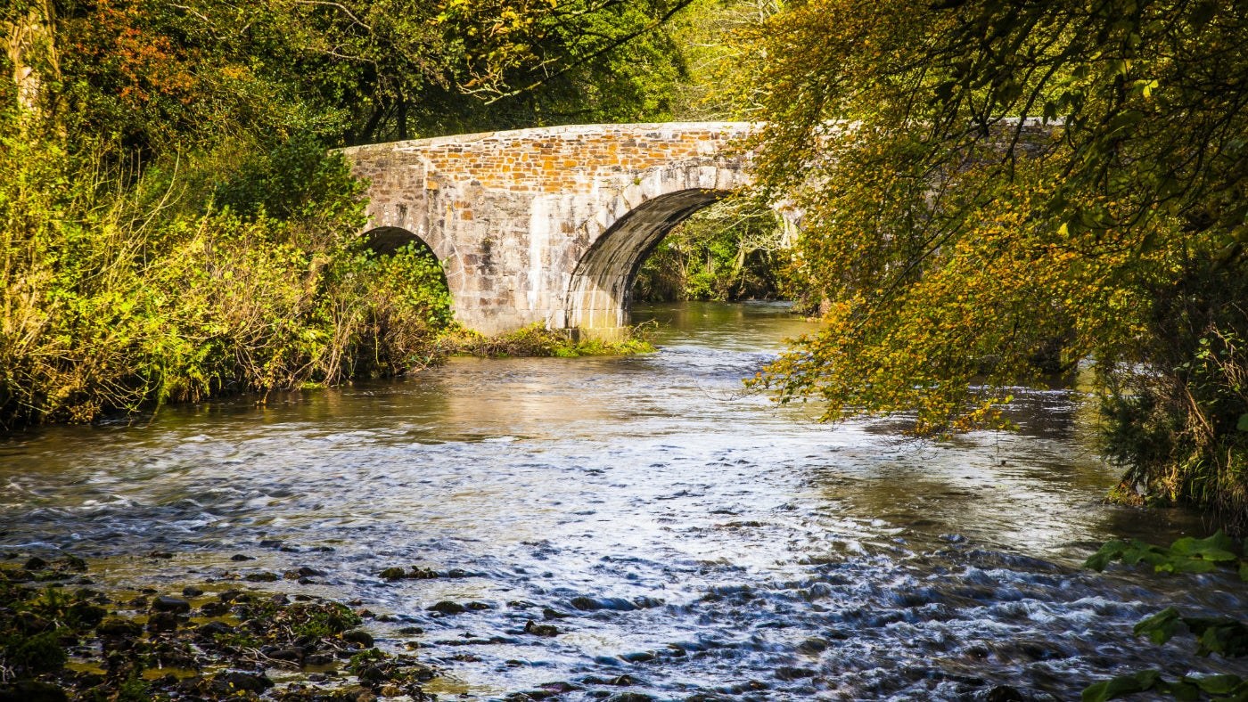 Lanhydrock Autumn estate Respryn Bridge