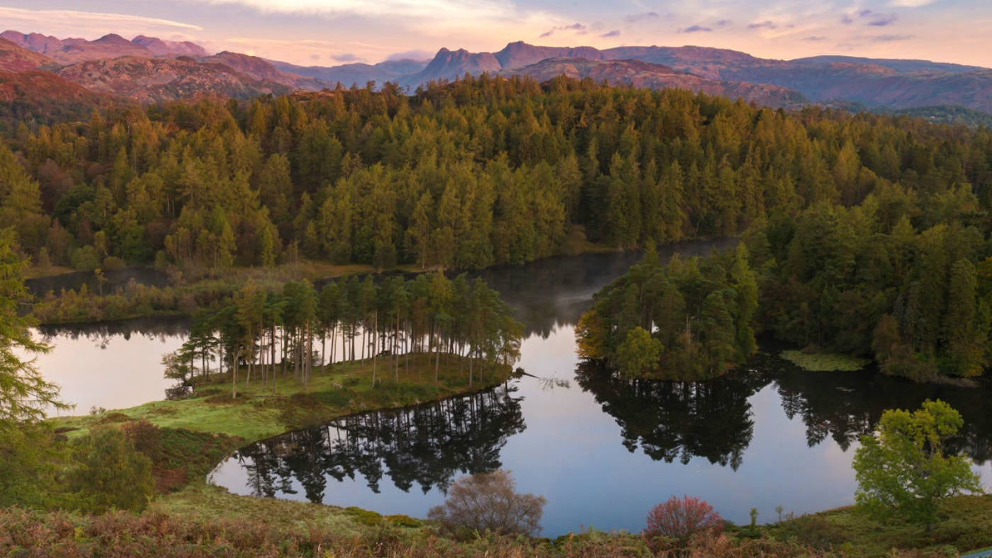 early morning view of Tarn Hows looking north west