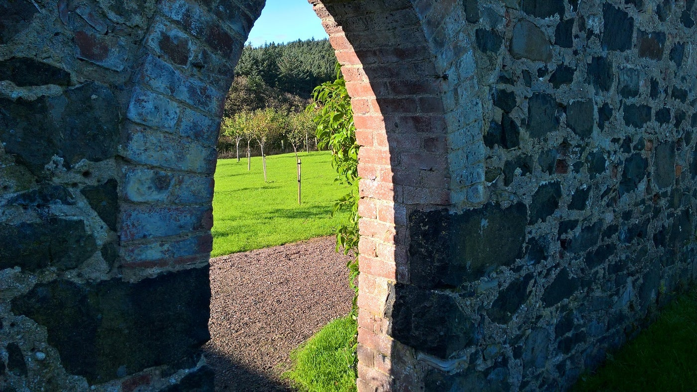Looking through the walls into the Orchard at Downhill