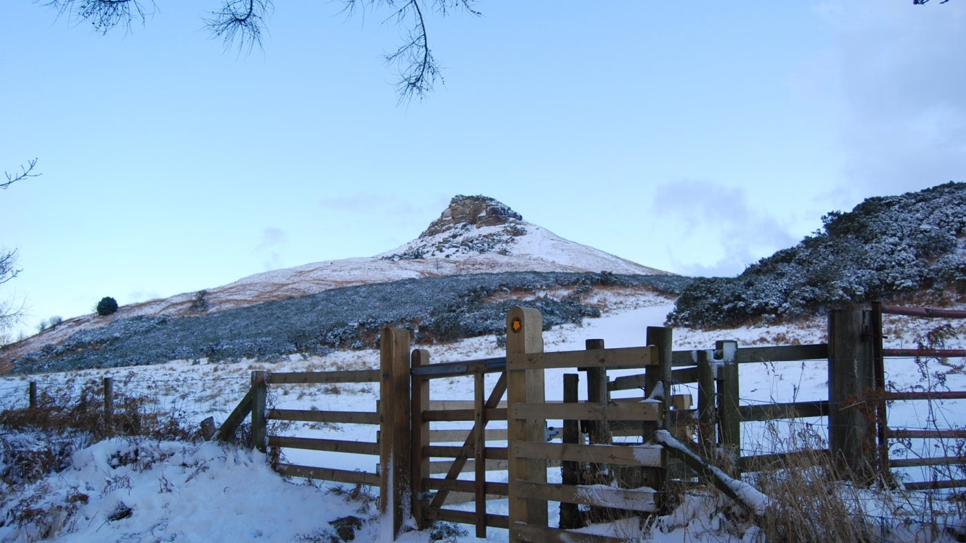 Roseberry Topping with a light covering of snow viewed from the top of Newton Wood