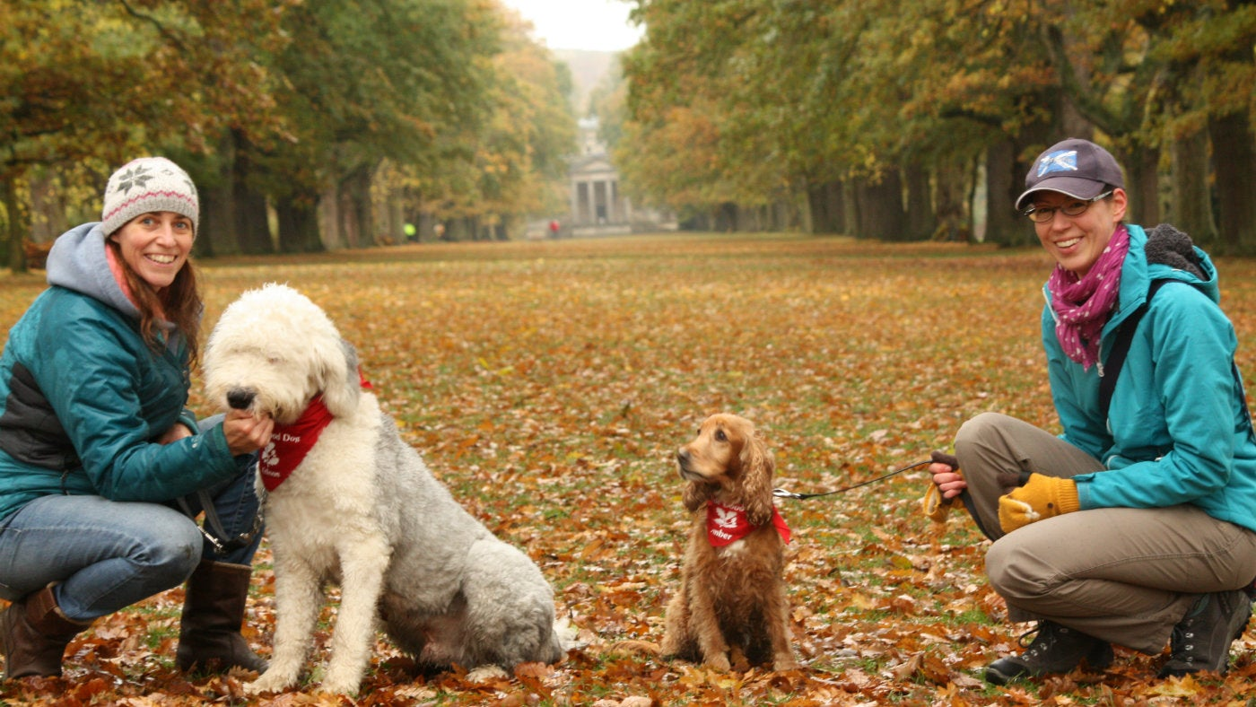 Two dogs with their owners at Gibside