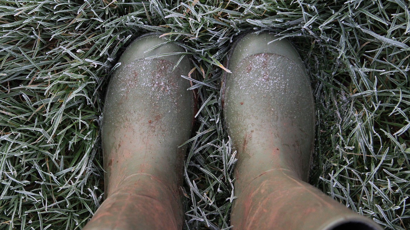 A close-up photograph of a pair of wellies standing on frosty grass