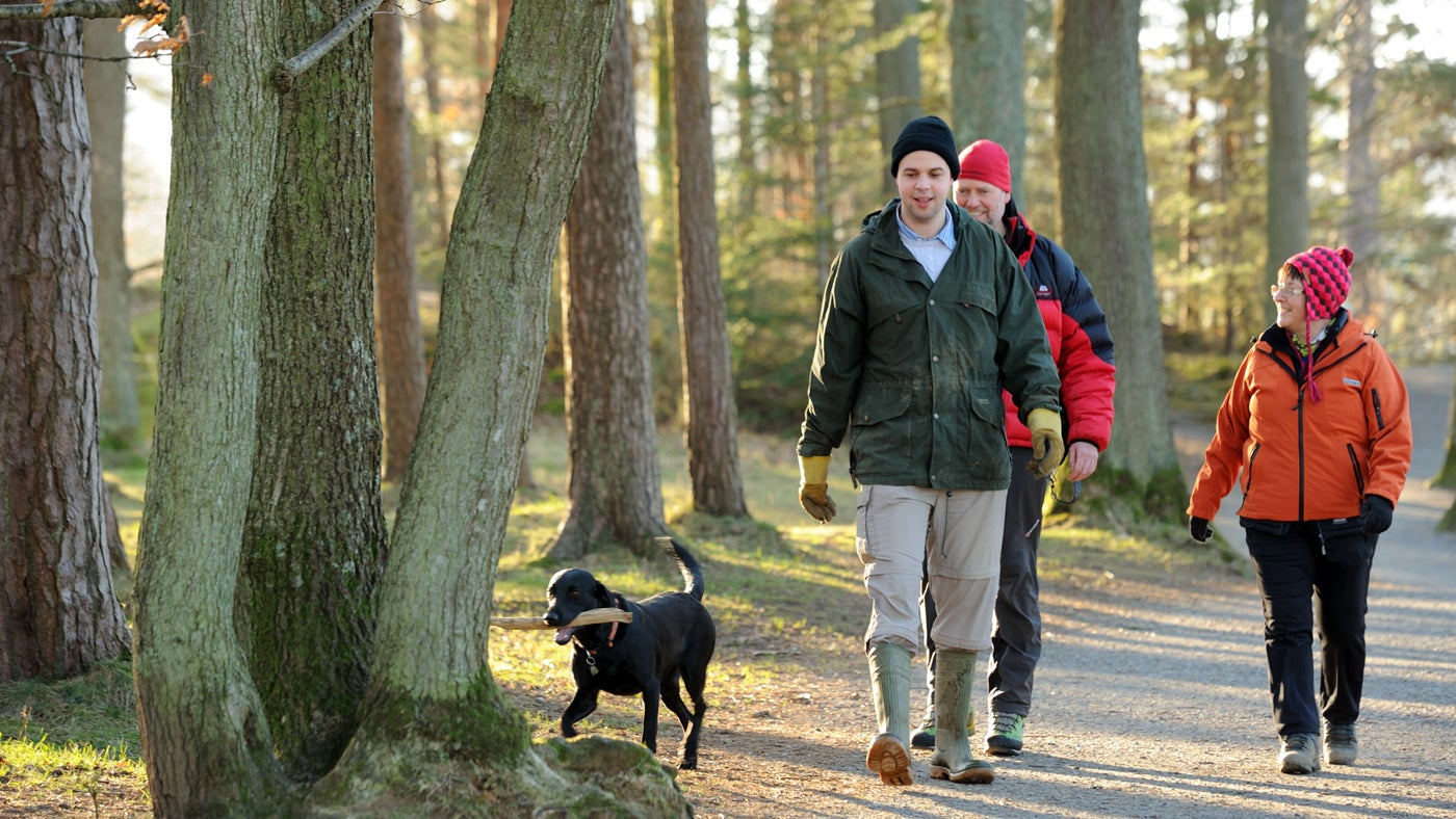 Dog walkers by the shore of Derwentwater, Borrowdale and Derwent Water, Cumbria.