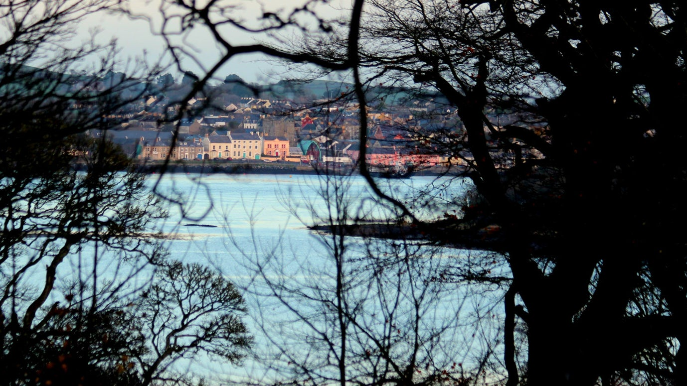 Fantastic views can be seen from Audley's Castle across the Lough before the trail meanders into the woodlands..