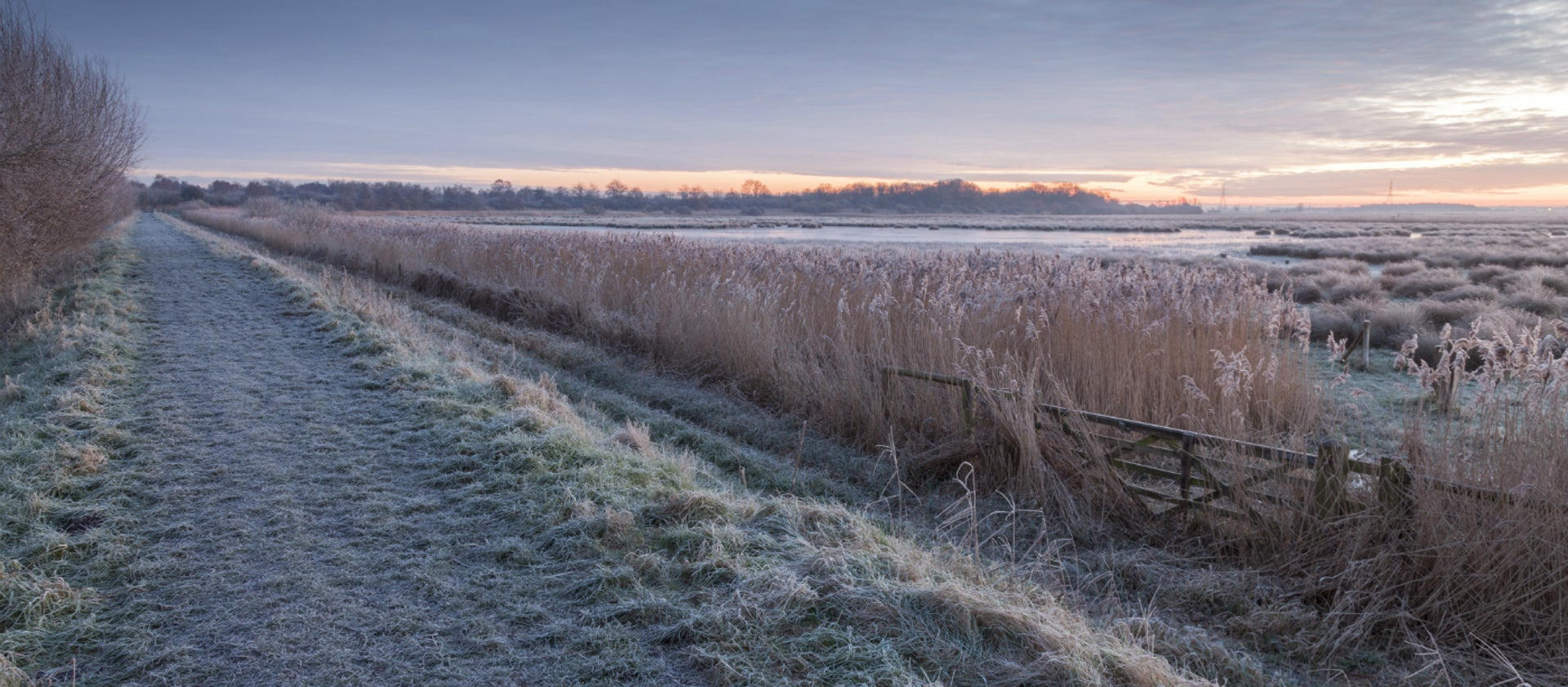Wicken Christmas.Christmas And Boxing Day Walks National Trust