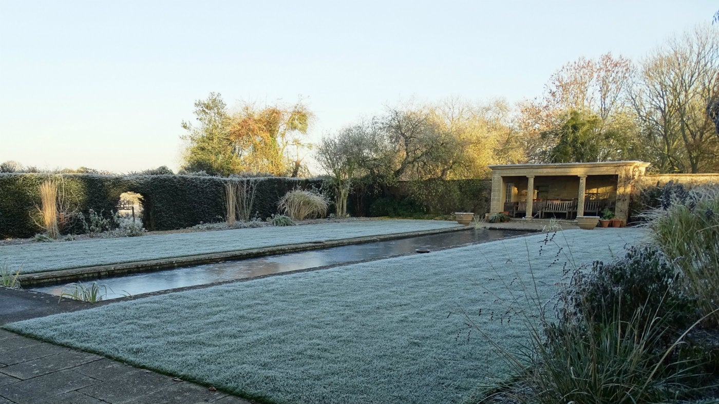 Pool garden covered in frost