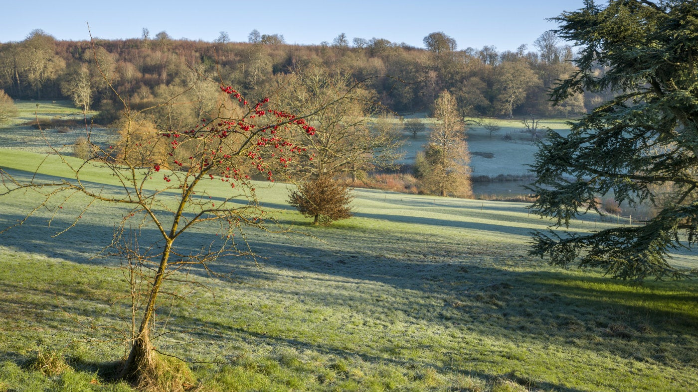 Frosty estate view at Chartwell, a National Trust property in Kent