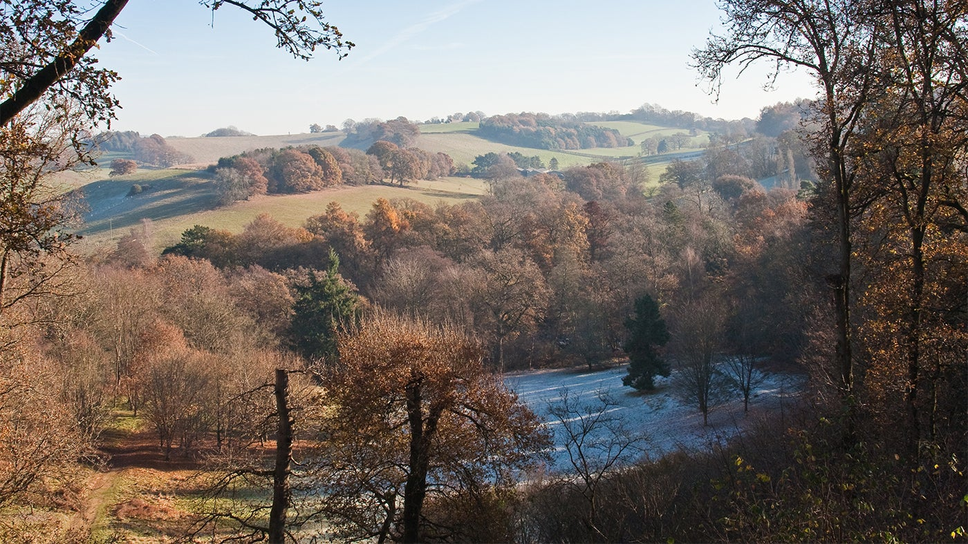 The view over Badger's Bowl and beyond on a frosty winter morning