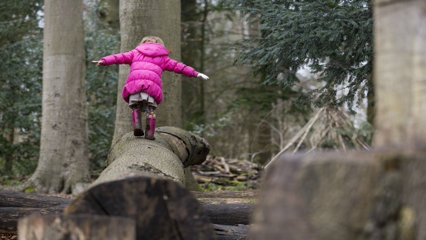 Killerton is great fun for winter play